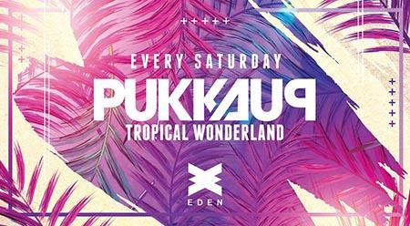 Pukka Up Present Tropical Wonderland