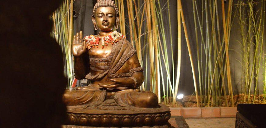 """Bambuddha"""">"""