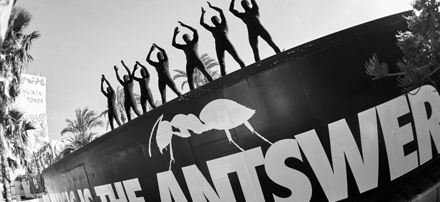 United Ants Closing