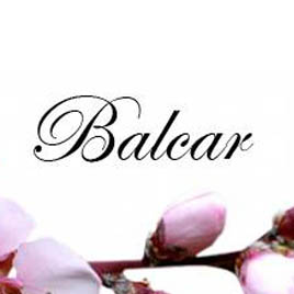 Balcar Hair and Lounge