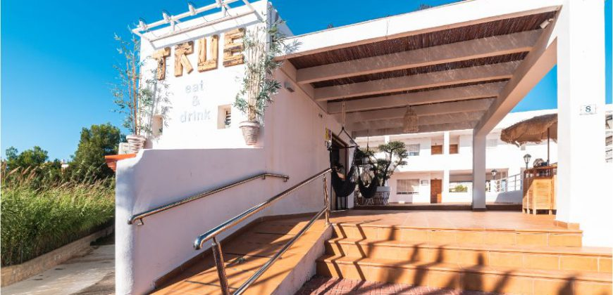 """True Ibiza"""">"""