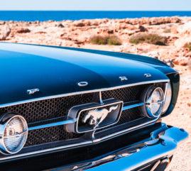 Mustang Adventures